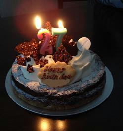 誕生日ケーキ,お祝い,プレゼント,贈り物,フードプロセッサー,ミキサー,購入,通販,マルチクイックプロフェッショナル