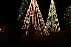 浜松フラワーパーク,イルミネーション,クリスマス,写真,赤ちゃん連れ,おでかけ
