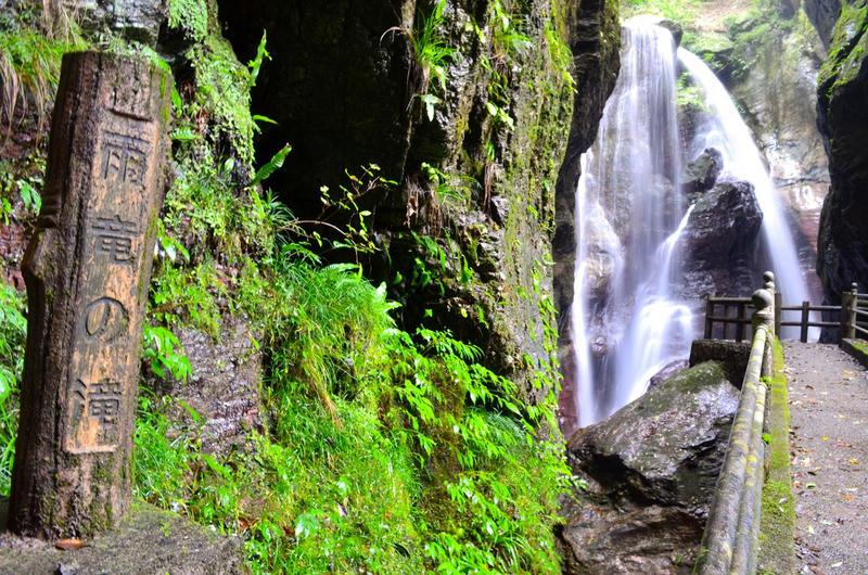 高知県中津渓谷に川遊びに行ったら苔フェチになりそう