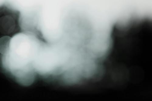 20100329.jpg