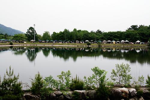 20110608_1.jpg