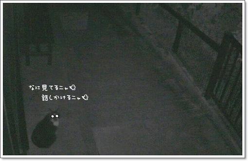 8643f969.jpeg