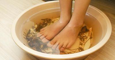 Chữa bệnh gout hiệu quả bằng lá tía tô