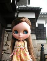 hiroshima_castle_2.jpg