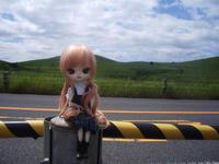 akiyoshidaimao.jpg