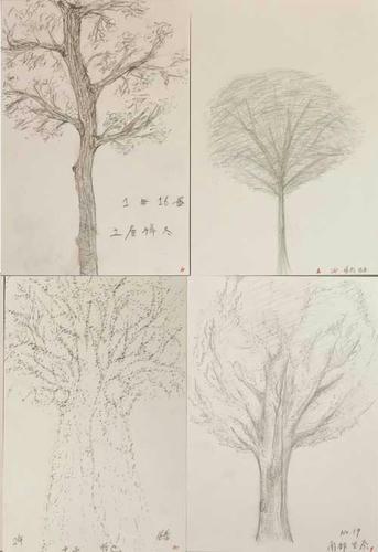 sketch1s.jpg