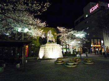 yozakurashingen.JPG
