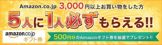 Amazonギフト券500円