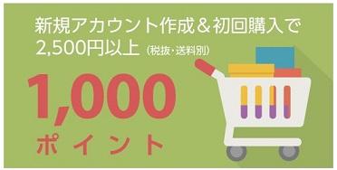 Rebates(リーべイツ)1,000ptプレゼント