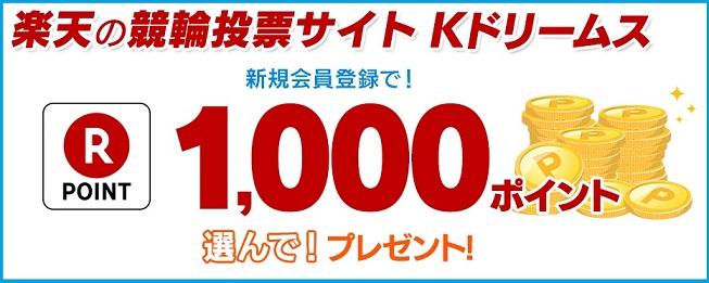 Kドリームス 新規会員登録で楽天スーパーポイント1,000ポイントプレゼント!さらにハピタス経由で1,200円もGETできます。