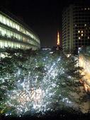 2007-11-17-3.jpg