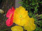 2008-4-19-11.jpg
