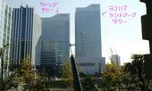2009-11-23-1.jpg