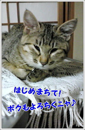 撮影日:2010-01-01