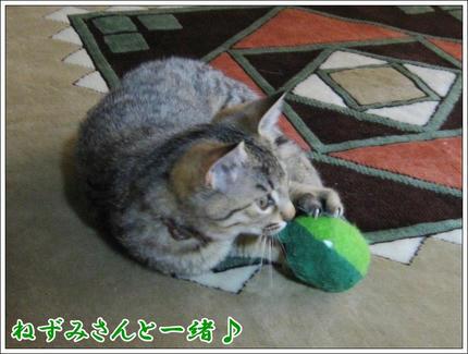 撮影日:2010-01-09