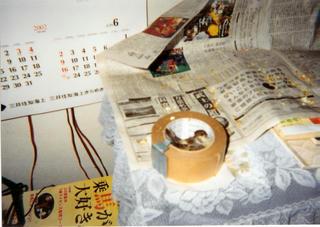 suzukiti3.jpg