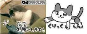 blogrankingbanr0046.jpg