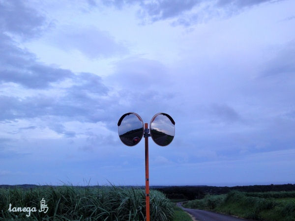 田島のカーブミラー