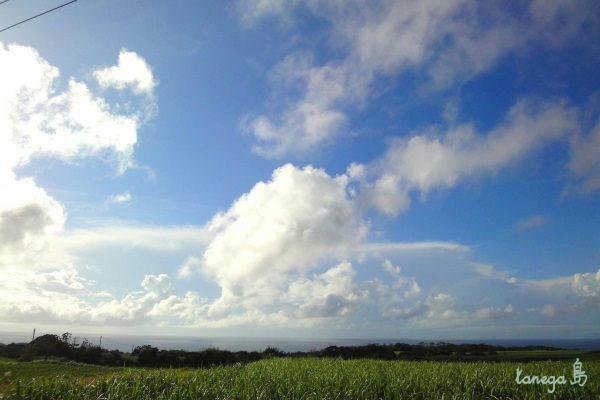 西海岸の空