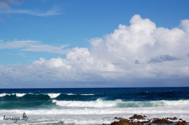 種子島の海と空