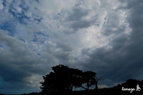 田島の曇り空