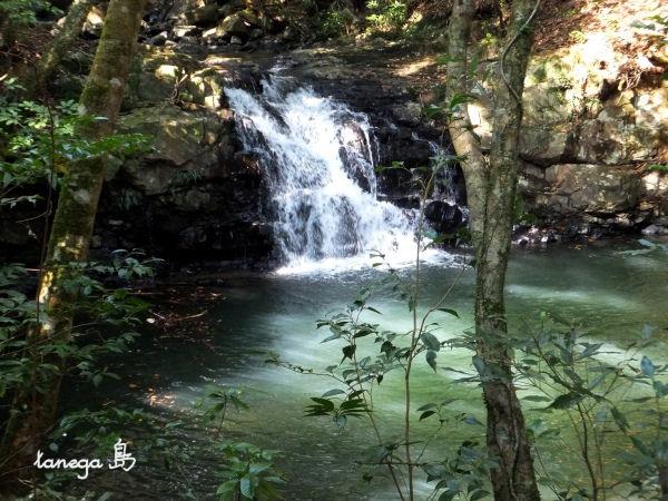 雄淵・雌淵の滝