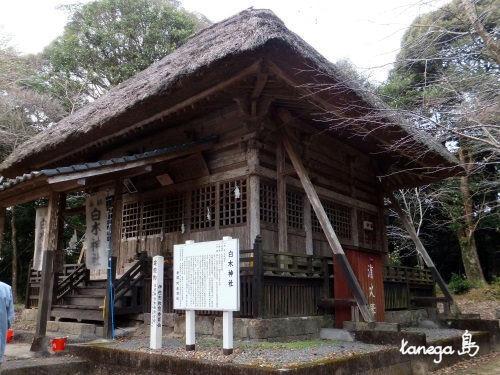 白木神社(鹿児島・大口)   tan...