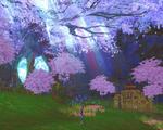 るーさんオススメの桜の村。最初みたとき「なんじゃこりゃー!」って言ったw