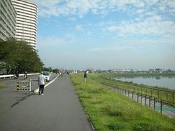 20081011-008.jpg