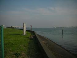 20081011-014.jpg