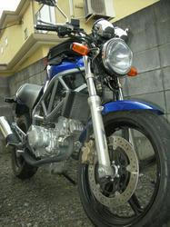 20081106-009.jpg