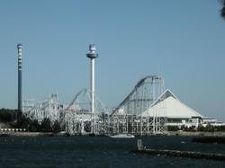 2011-1-10-006.jpg