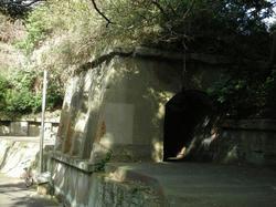 2011-1-10-021.jpg