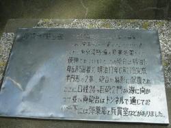 2011-1-10-023.jpg