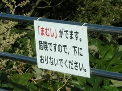 2011-1-10-030.jpg