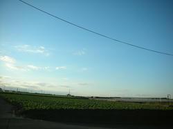 2011-1-10-050.jpg