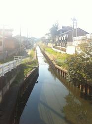 20120410-034.jpg