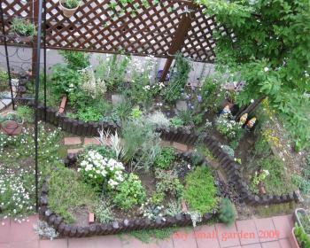 2009 my small garden