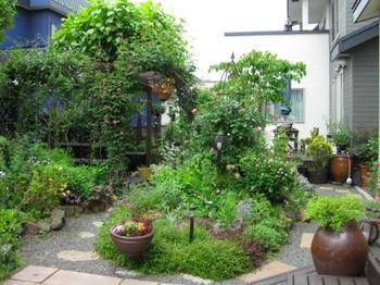 ガーデニング 2013.06.25撮影:Iちゃん家の庭