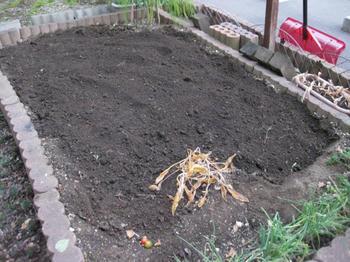秋の庭 野菜畑