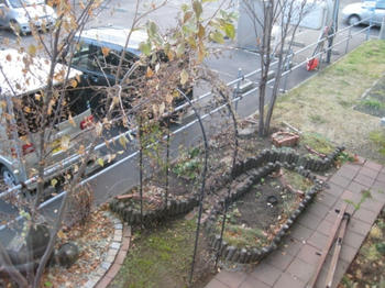 mukuの庭:フェンスを外した庭