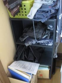整理、収納、大掃除のやり方(クローゼットの掃除):大掃除前