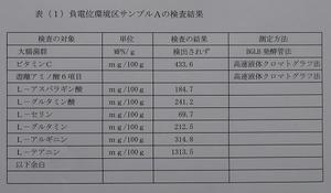 P1020225.JPG