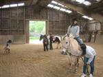 ridinghorse.jpg