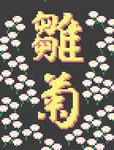 035 JP雛菊 daisy