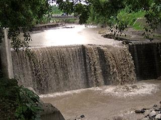 ボヨン川の中流