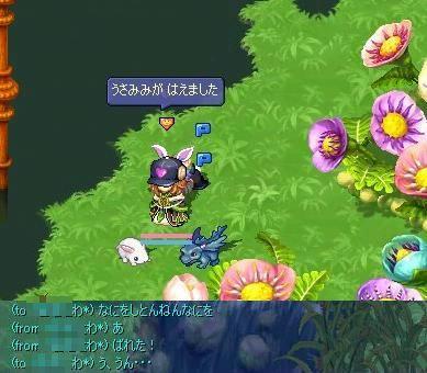 screenshot0088.jpg