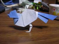 s-bird_2.jpg