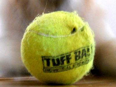 Petsport Giant Tuff Ball 献上15日目にしてフェルト貫通