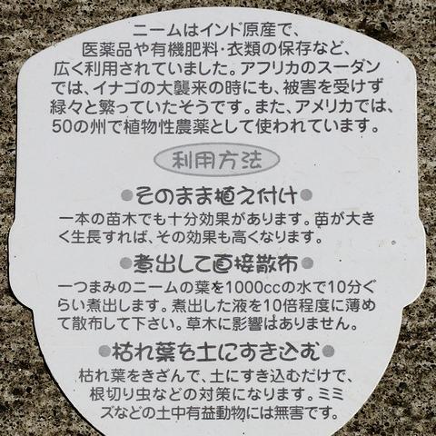 ニームの苗木、「ミラクルニーム」の説明札(裏)
